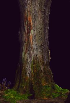 tube tronc d'arbre