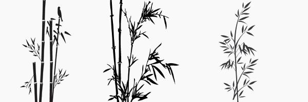 brushe bambou